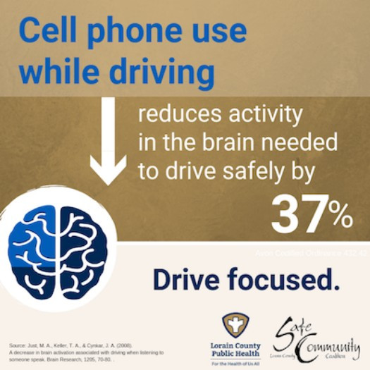 Distracted Driving Reduces Brain Activity